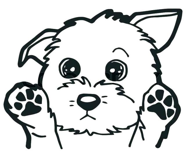 Dog Head Coloring Pages At Getdrawings Free Download