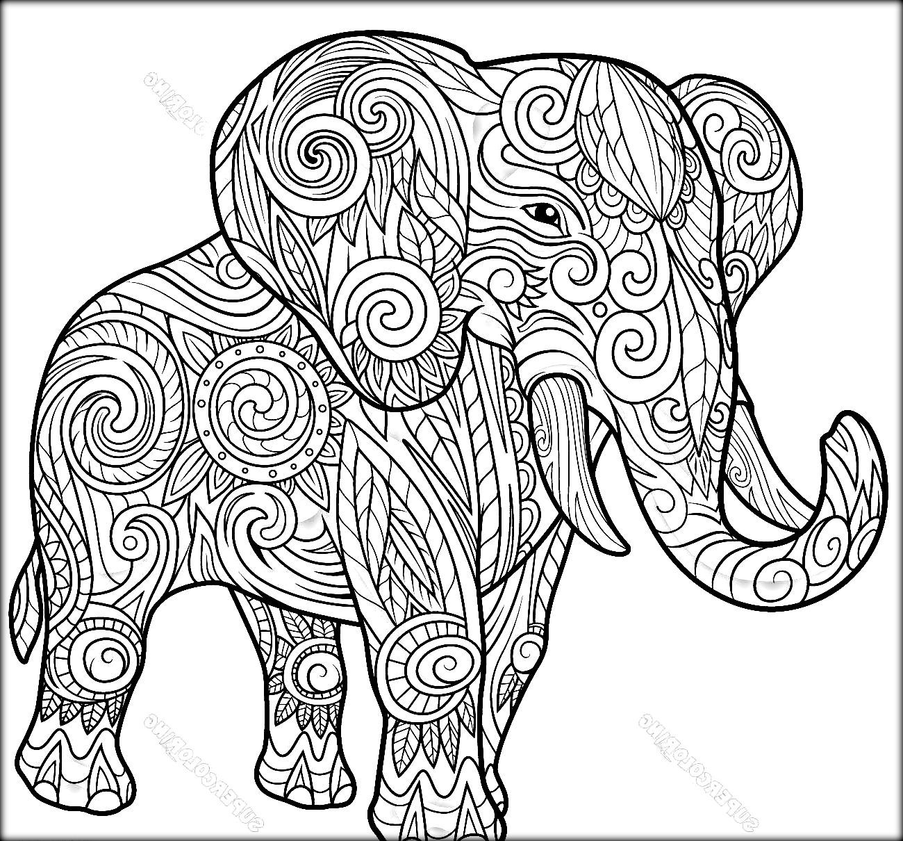 Elephant Coloring Pages At Getdrawings