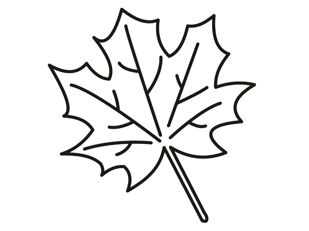 Fall Leaves Clip Art Coloring Pages At Getdrawings