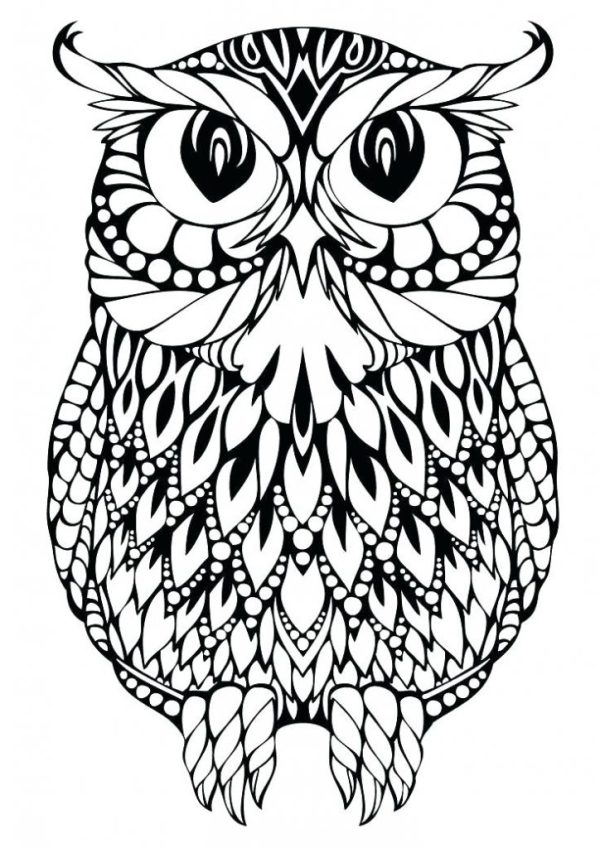printable owl coloring pages # 31