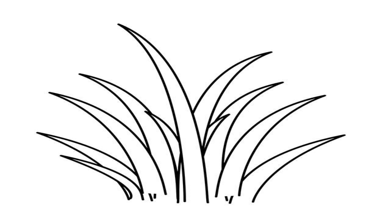 Grass Coloring Page At Getdrawings
