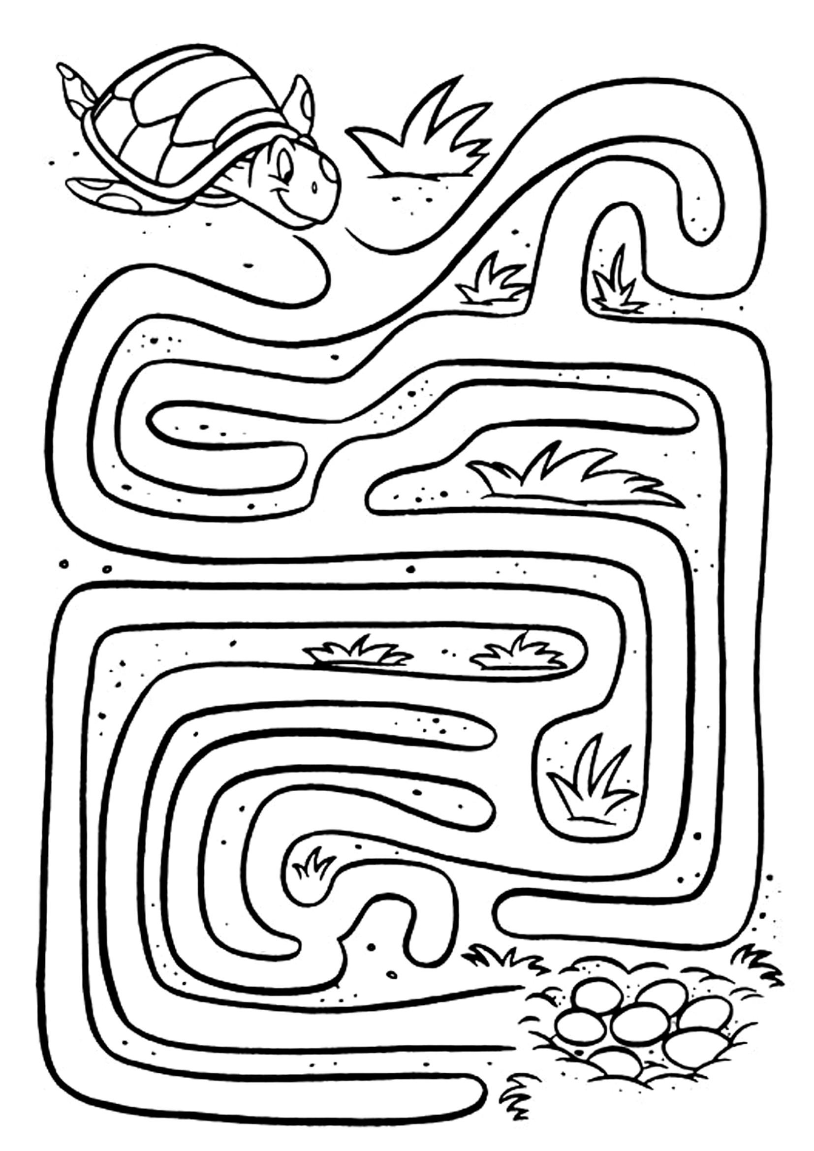 Groundhog Day Printable Coloring Pages At Getdrawings