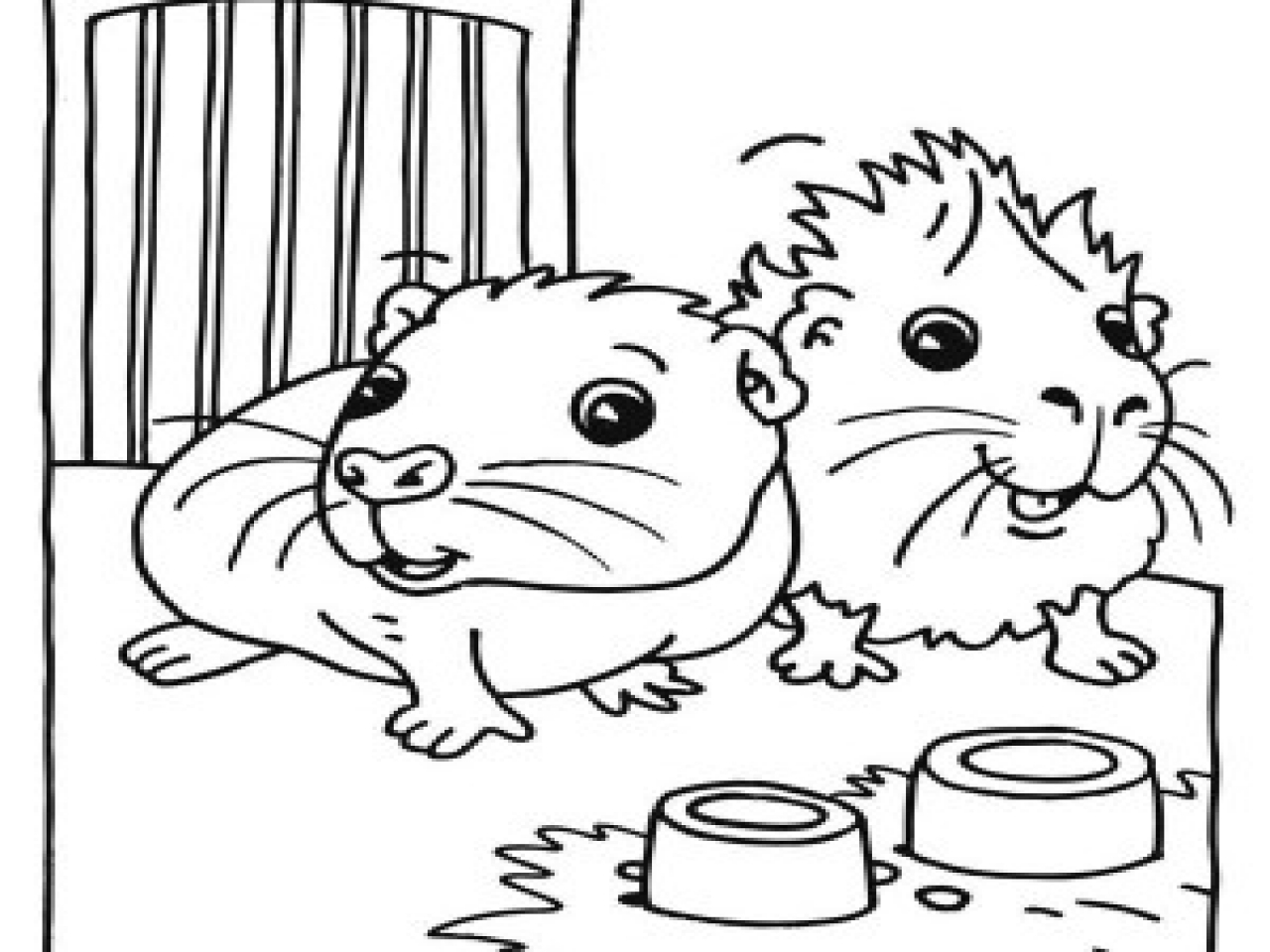 Guinea Pig Coloring Pages To Print At Getdrawings