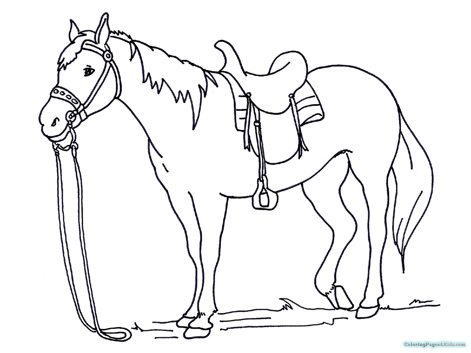 Horse Coloring Pages Spirit At Getdrawings