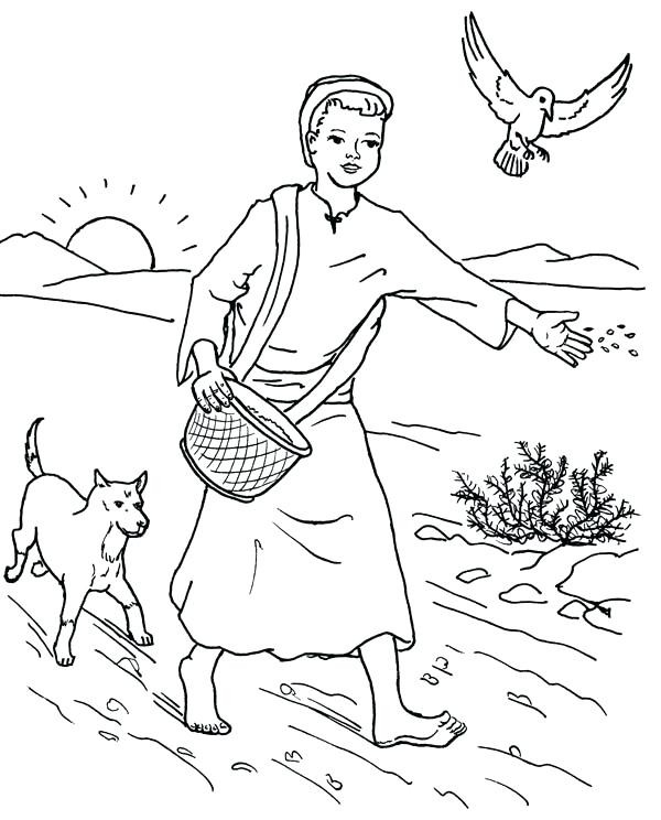 Parable Of The Sower Coloring Page at GetDrawings.com