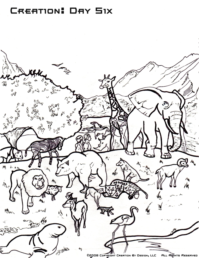 Printable Creation Coloring Pages at GetDrawings.com