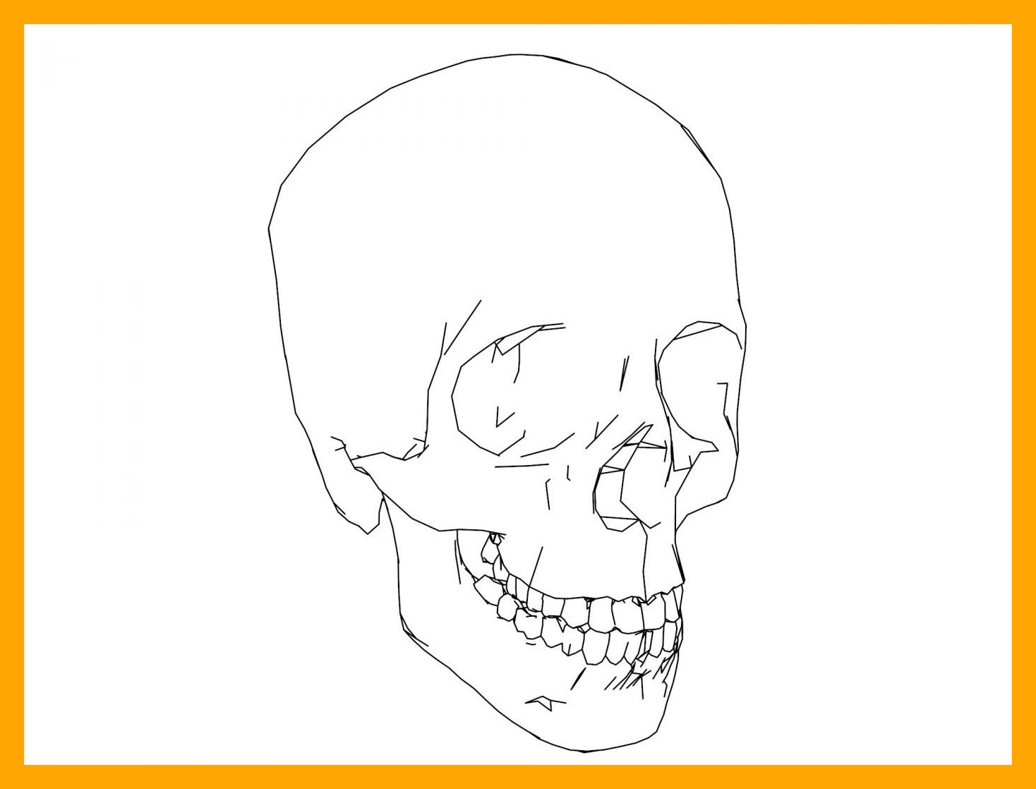Skull Anatomy Coloring Pages At Getdrawings