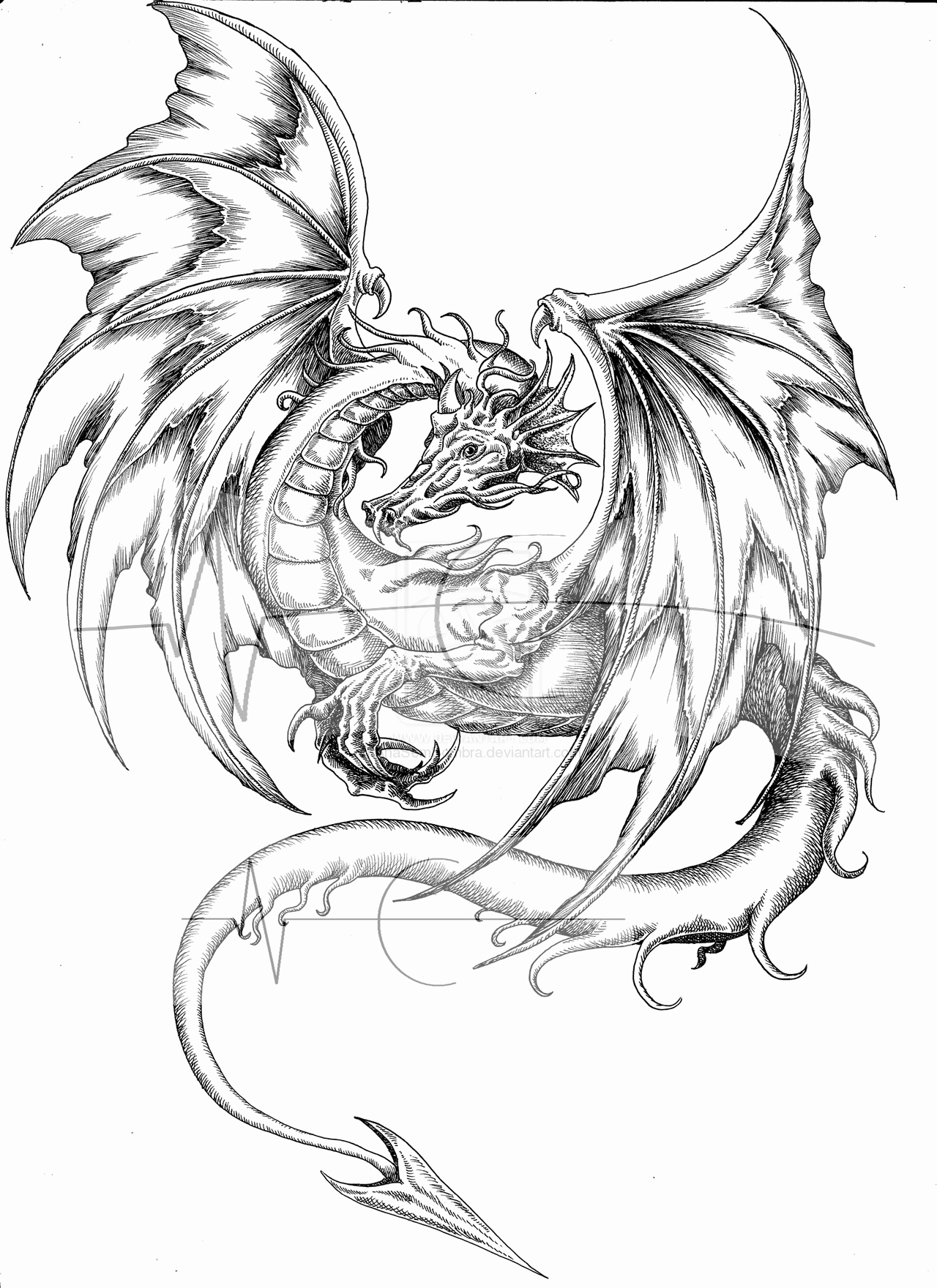 Wings Of Fire Dragon Coloring Pages : wings, dragon, coloring, pages, Wings, Dragon, Coloring, Pages, GetDrawings, Download