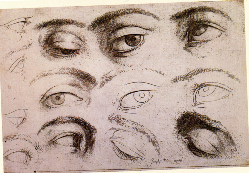 Anatomy Of The Eye Drawing at GetDrawings   Free download