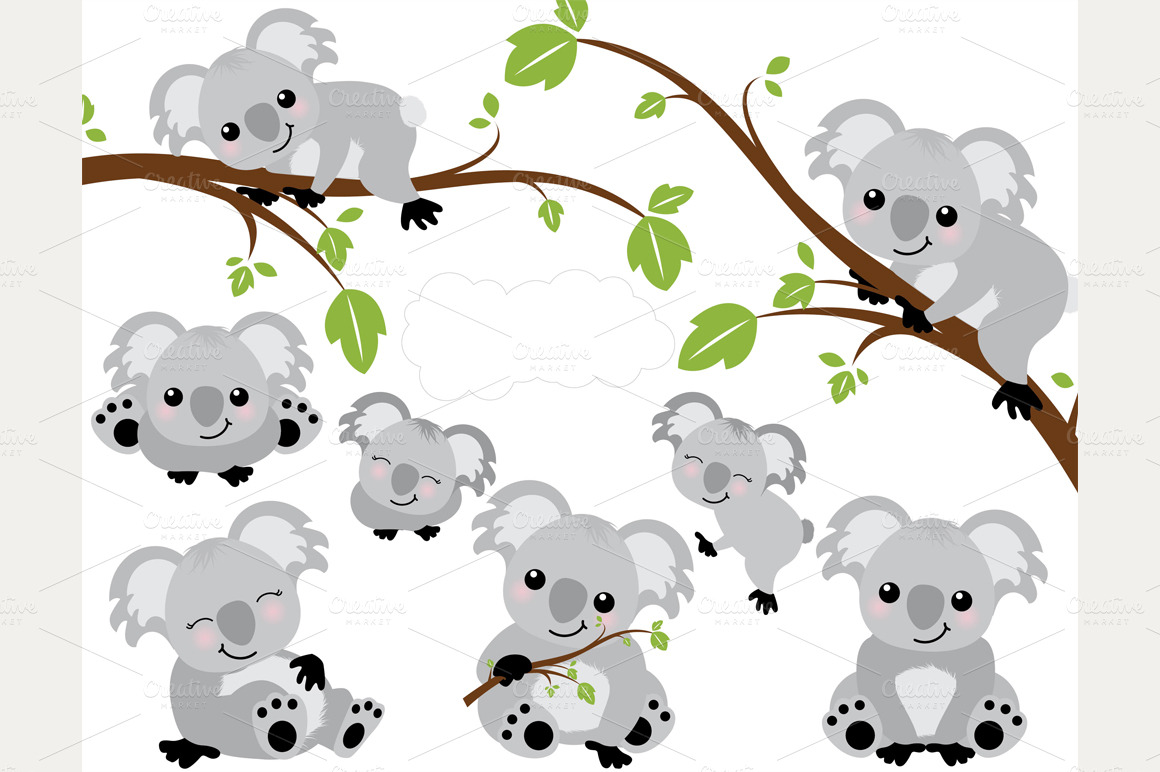 hight resolution of 1160x772 koalas koalas bears animal and baby animals