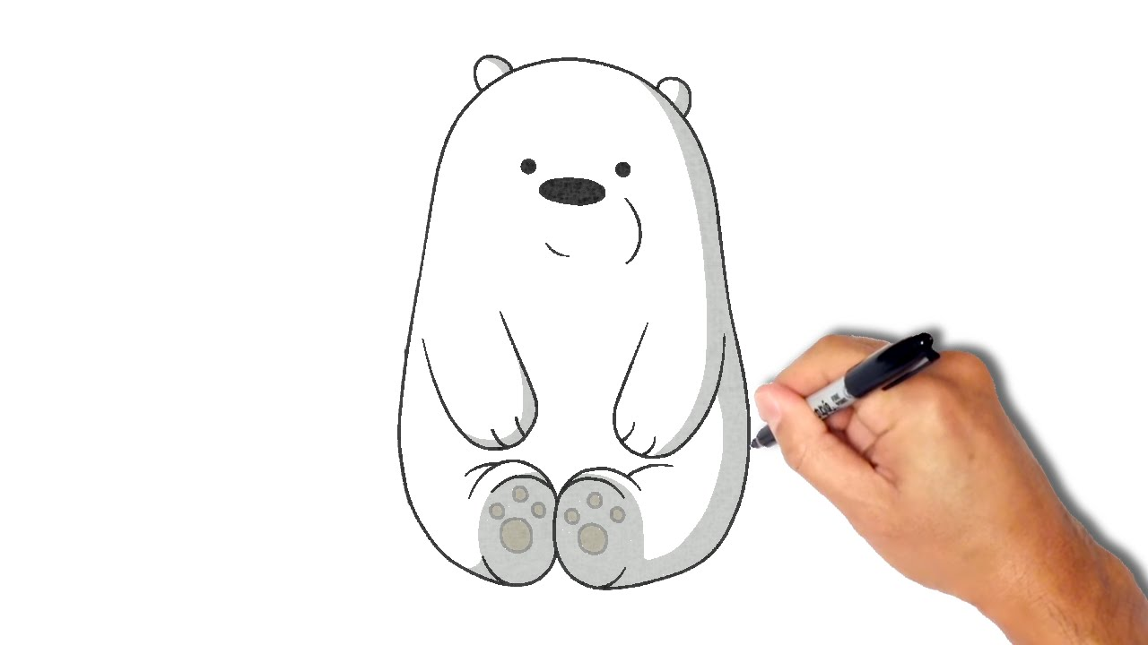 Baby Polar Bear Drawings Easy