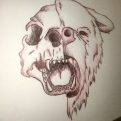 Bear Skull Diagram 2000 Dodge Neon Radio Wiring Drawing At Getdrawings Free For Personal