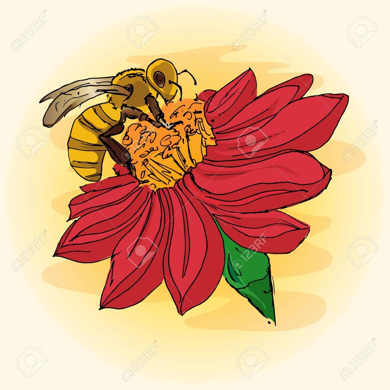 Bee On Flower Drawing At Getdrawings