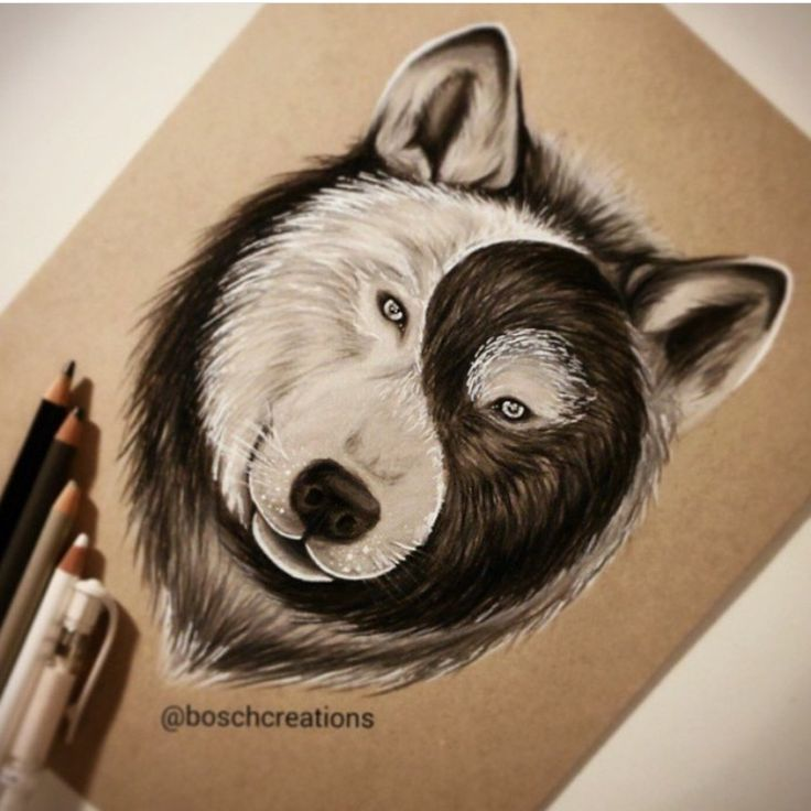 cool drawing of wolves