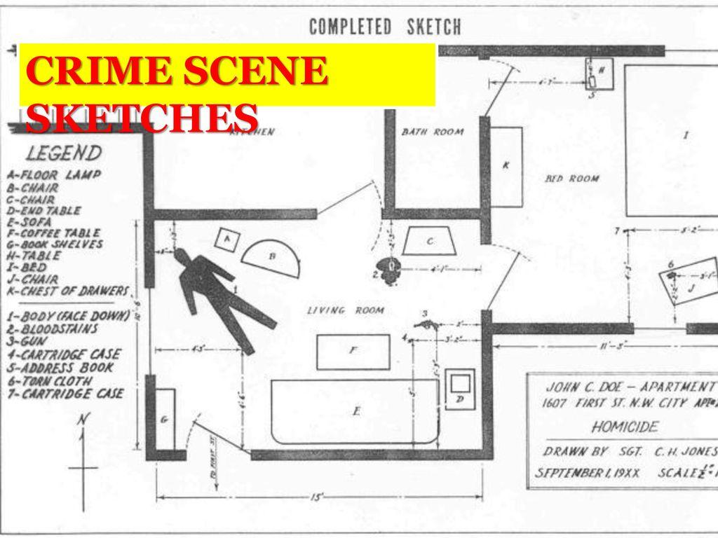 Crime Scene Drawing At Getdrawings