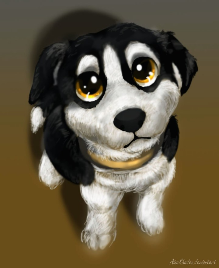 cute puppy eyes pictures amatwallpaper org