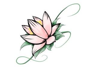 flowers easy drawing flower drawings getdrawings