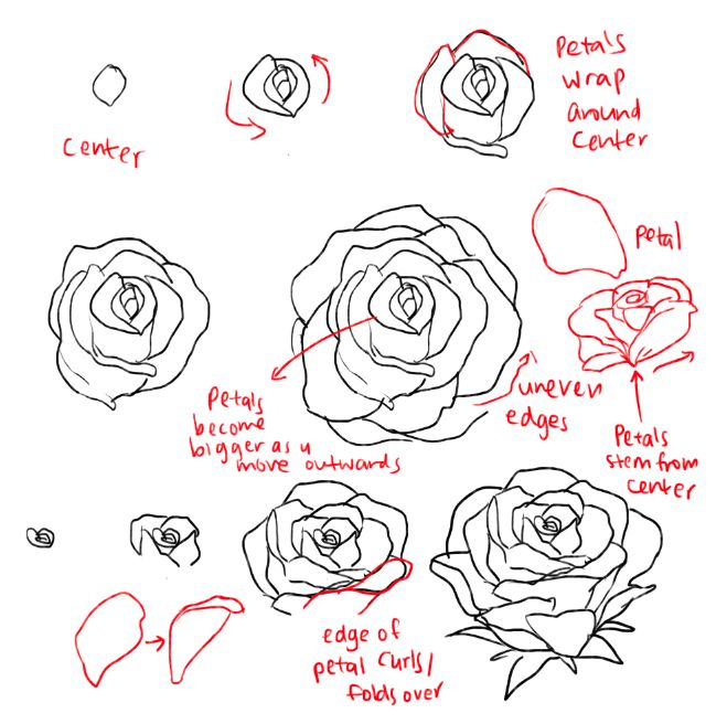 dbeb687c8 Easy Flower Drawing Tutorials At Getdrawings Com Free For Personal
