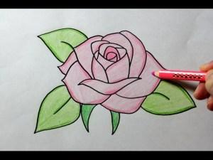 rose roses drawing easy draw tutorial step rosa drawings simple sketch flower beginners garden open getdrawings ros paint tutorials paintingvalley