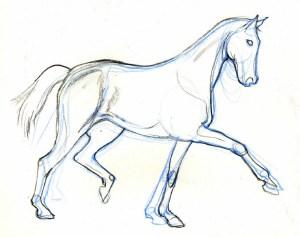 horse easy drawing head getdrawings