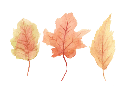 Image result for tumblr sticker autumn leaves