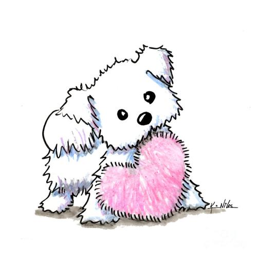 small resolution of 900x900 maltese heart n soul puppy drawing by kim niles