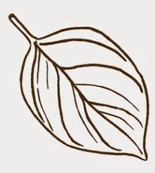leaf template oak outline drawing fall clip getdrawings