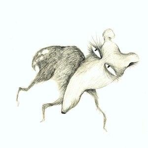 pencil deer drawings drawing getdrawings