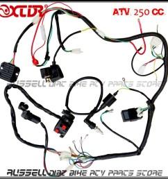 1000x1000 complete electrics wiring harness atv quad 4 wheeler 200cc 250cc [ 1000 x 1000 Pixel ]