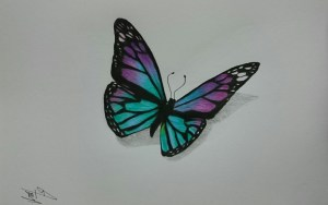 butterfly drawing pencil realistic sketch butterflies draw drawings 3d simple sketches colored getdrawings paintingvalley