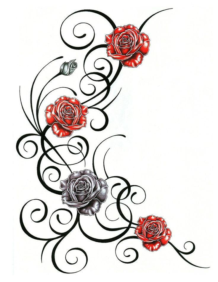 Rose Vine Drawing at GetDrawingscom  Free for personal use Rose Vine Drawing of your choice