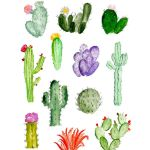 Simple Cactus Drawing At Getdrawings Free Download