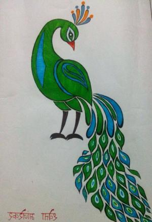 peacock drawing easy simple colorful draw pencil drawings feather colored feathers getdrawings paintingvalley
