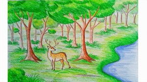 forest drawing nature scene simple easy draw animals scenery getdrawings step