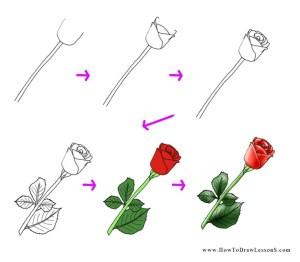 rose draw drawing tutorial flower simple flowers easy drawings step tutorials hand roses drawn steps any sketch getdrawings thing dessins