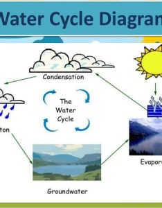 simple water cycle diagram the diagrams site also drawing at getdrawings free for personal rh
