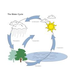1000x1000 water cycle diagram [ 1000 x 1000 Pixel ]