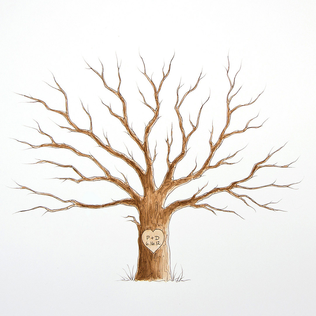 Tree No Leaves Drawing At Getdrawings