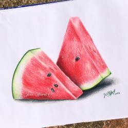 watermelon drawing realistic fruit pencil drawings colour pencils food fruits prismacolor elford jess drawn sketch painting colored shading watercolor paintings