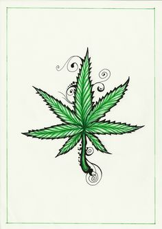 Step By Step Pot Leaf Drawing : drawing, Drawing, GetDrawings, Download