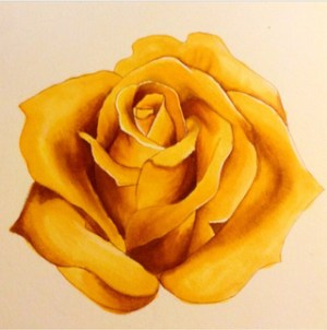 yellow rose drawing drawings getdrawings yellowrose