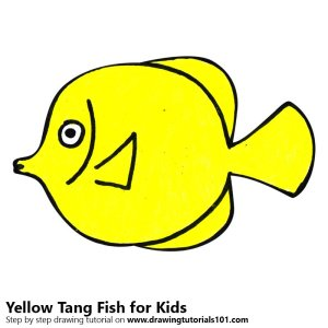 yellow fish tang draw drawing animals step getdrawings learn clipartmag
