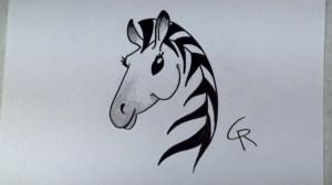 zebra cartoon draw easy drawing stylish getdrawings learn