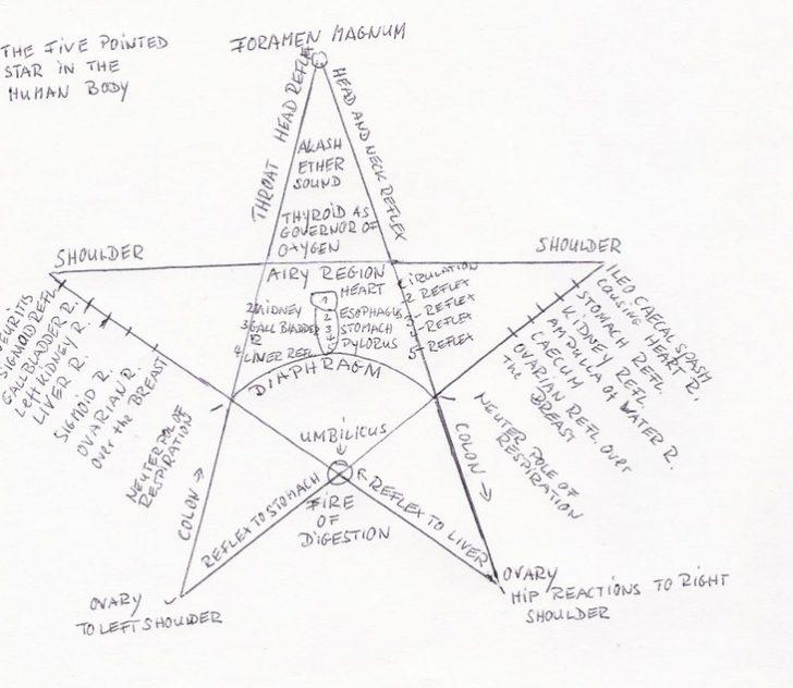 Six Pointed Star Quilt Pattern Best 5 Point Star Quilt Pattern