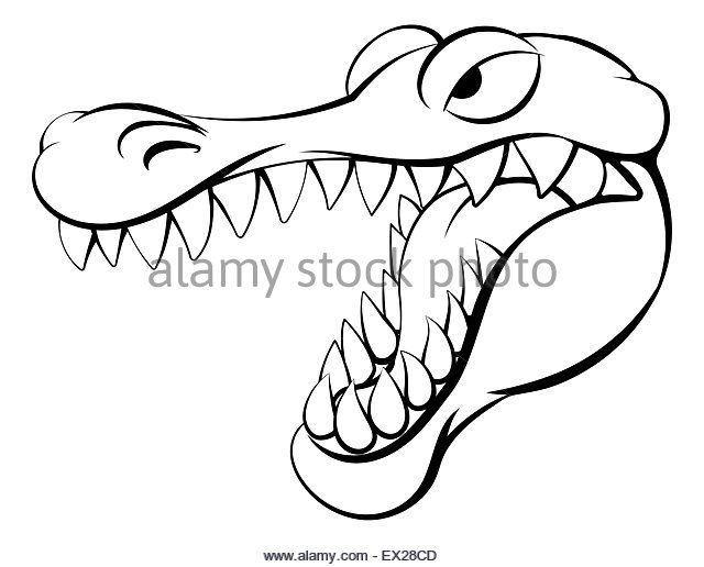 Crocodile Line Drawing At Getdrawings Com
