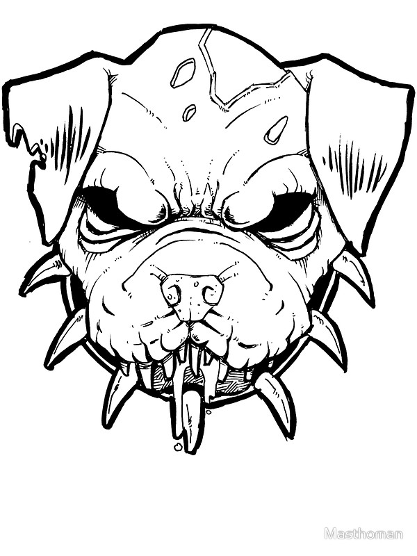 Pitbull Face Drawing At Getdrawings Com