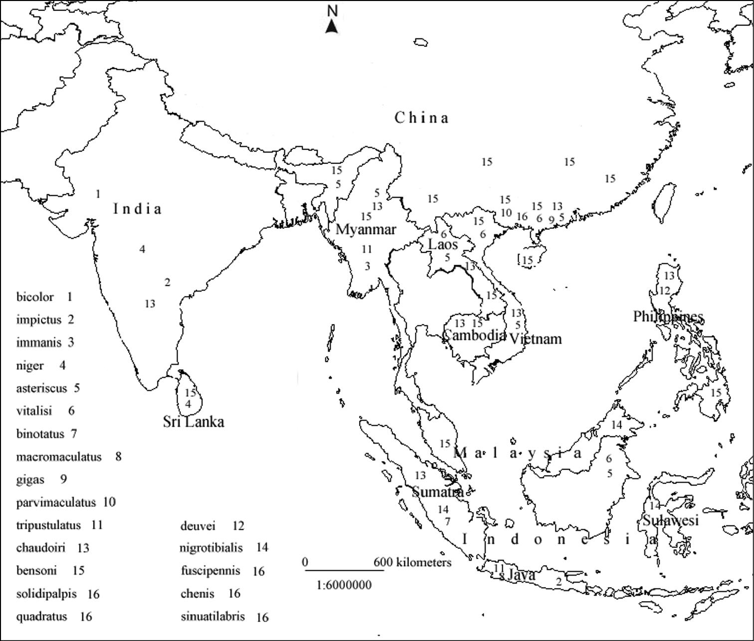 Asia Map Drawing At Getdrawings