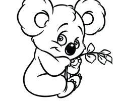 Koala Bilder Zum Ausmalen