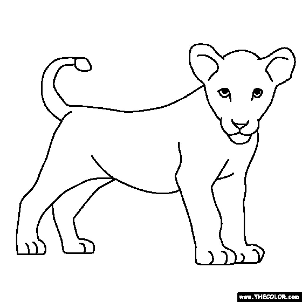 Baby Lion Drawing At Getdrawings