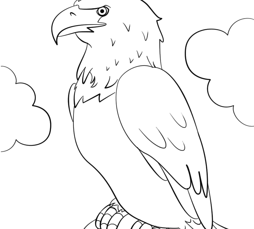 Bald Eagle Drawing Step By Step At Getdrawings Com